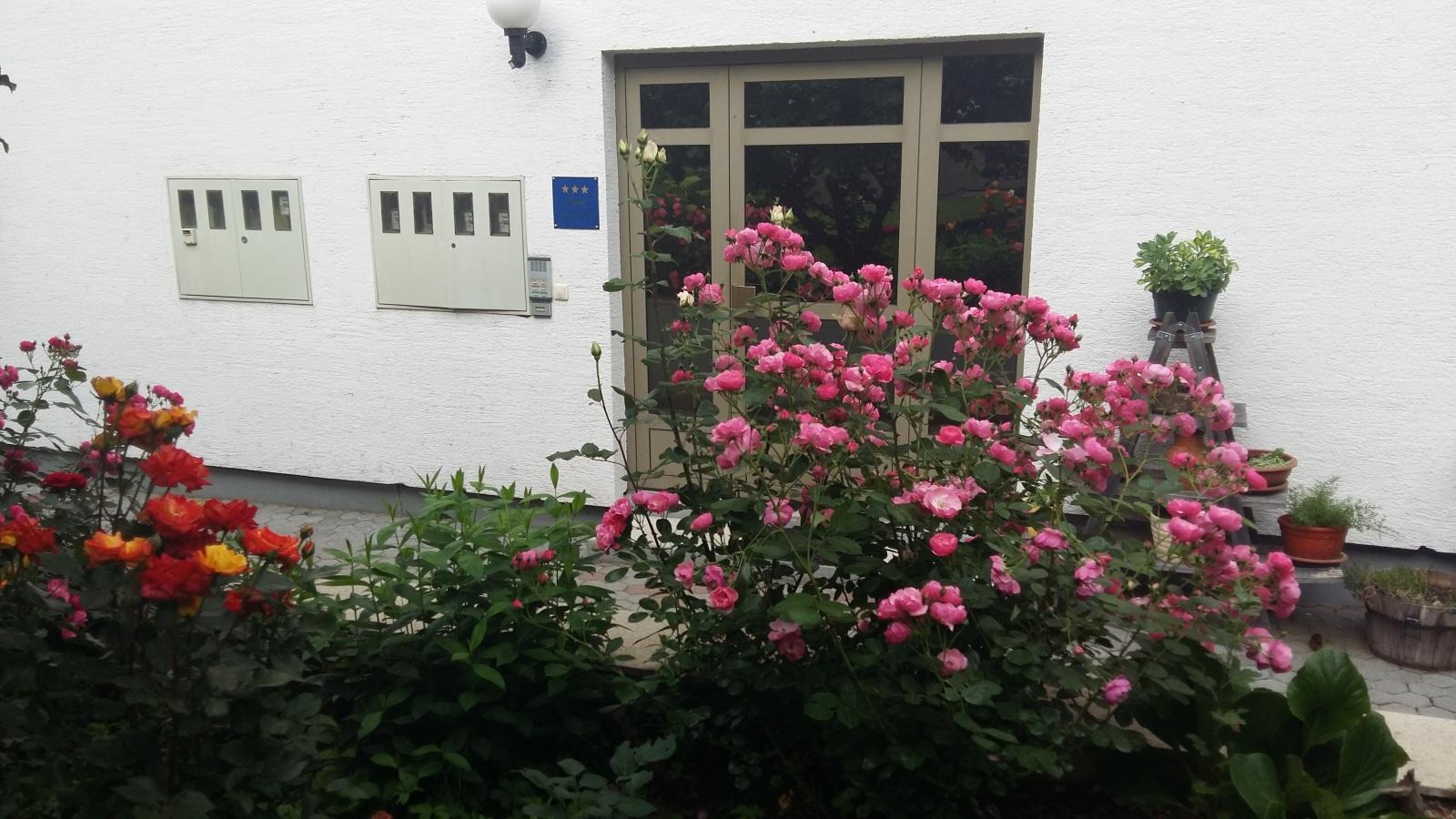 apartman_magnolija_1