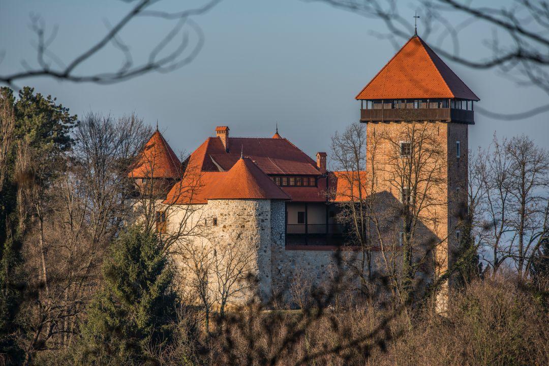 stari grad Dubovac
