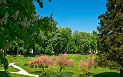 The Vrbanić gardens