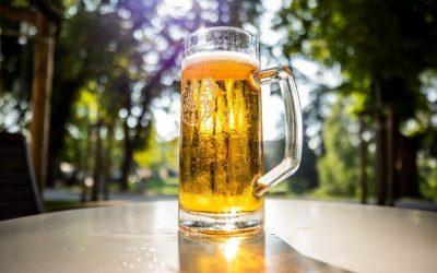 Na pivo u Karlovac – javni poziv