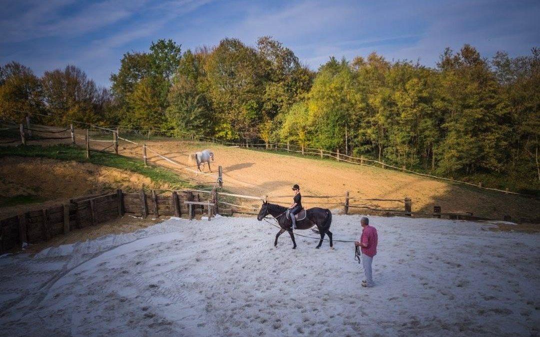 Horseville – seosko domaćinstvo
