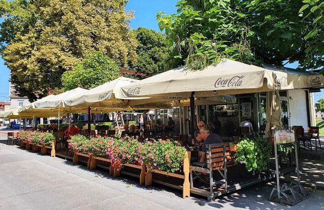 Caffe bar Catalpa